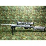 Repetierer HOWA Varminter Raid .308 Win inkl. ZF